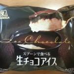 スプーンで食べる生チョコアイス【森永】