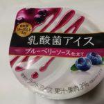 乳酸菌アイス ブルーベリーソース【メイトー】