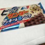 ビッグサンダー クッキー&塩バニラ【有楽製菓】
